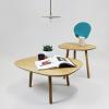 Salon coffe table-0