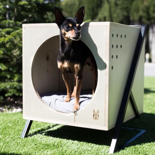 Caseta mascota Cube-8431